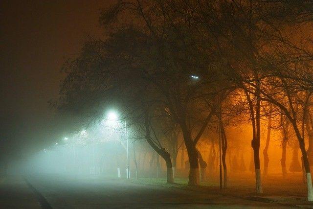 7 декабрда айрим жойларга туман тушади